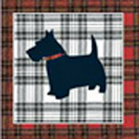Scottie dog geetings card