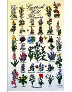 Scottish Wildflowers Tea Towel